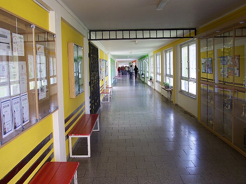 Nastavnica iz Podgorice dobila otkaz, učila đake da su Crnogorci – Srbi