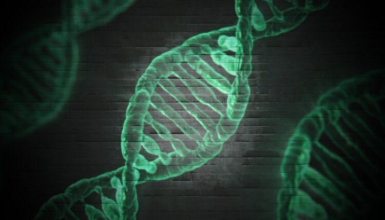 Naučnici otkrili tajnu očekivanog životnog veka