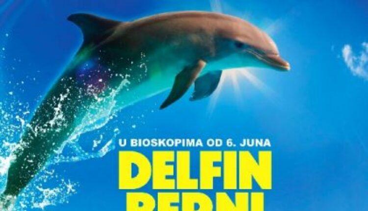Delfin Berni (video)