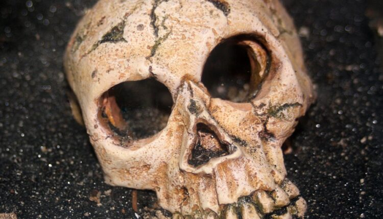 Rešena misterija neobičnih izduženih lobanja nađenih nedaleko od Srbije