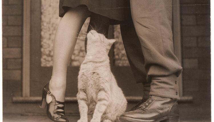 Nauka ima odgovor zašto se mnogi parovi ugoje nakon što stupe u ozbiljnu vezu