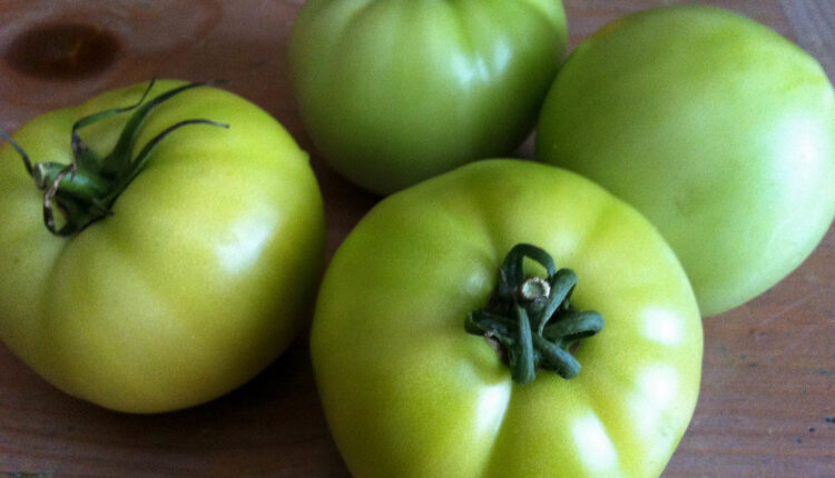 Jesenji specijalitet: Nekuvani ajvar od zelenog paradajza