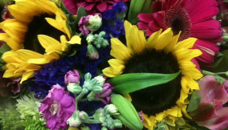 Vaš omiljeni cvet prema horoskopu RAZOTKRIVA vašu ličnost