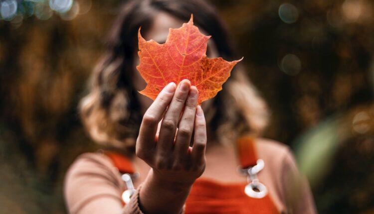 Od sutra – pravo jesenje vreme