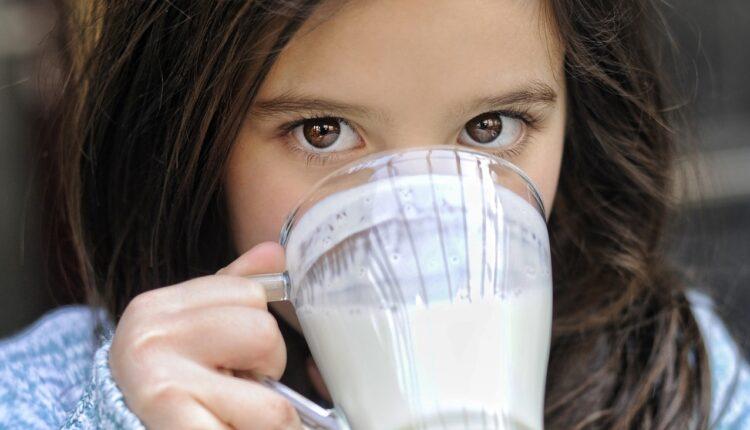 Pijemo ga svakodnevno, ali koliko je jogurt zaista zdrav?