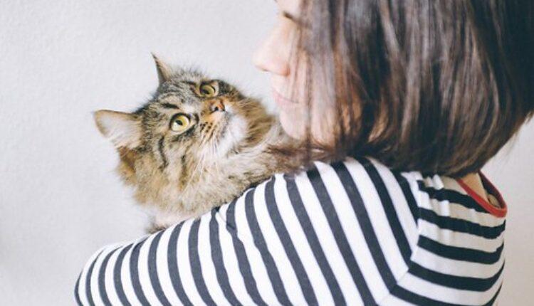 Ovako ćete otkriti da li vas vaša mačka voli