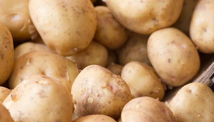 Ovako se pravilno čuva krompir!